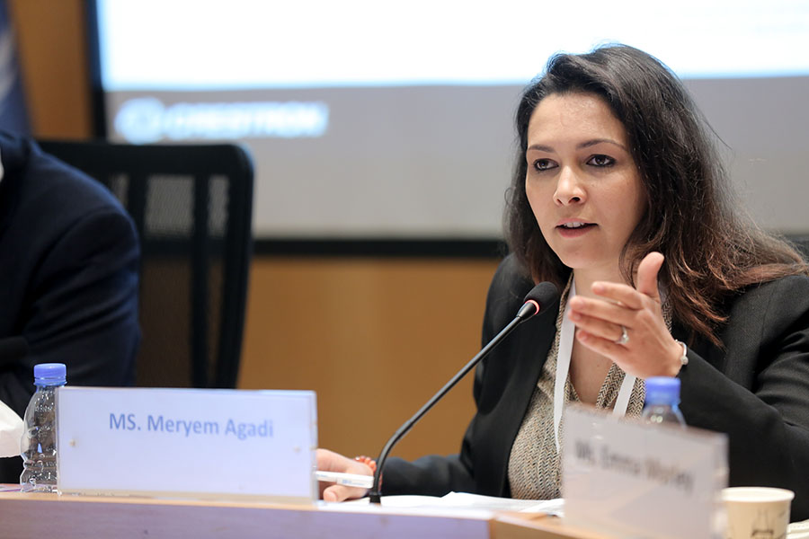 Meryem Agadi, in charge of Cooperation and Partnerships at the General Secretariat of Ministry of Youth and Sports in Morocco © (Imad Maalouf, UNV 2019)