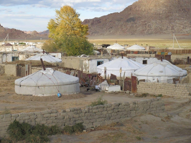 Mongolia urbanisation UNV FAO