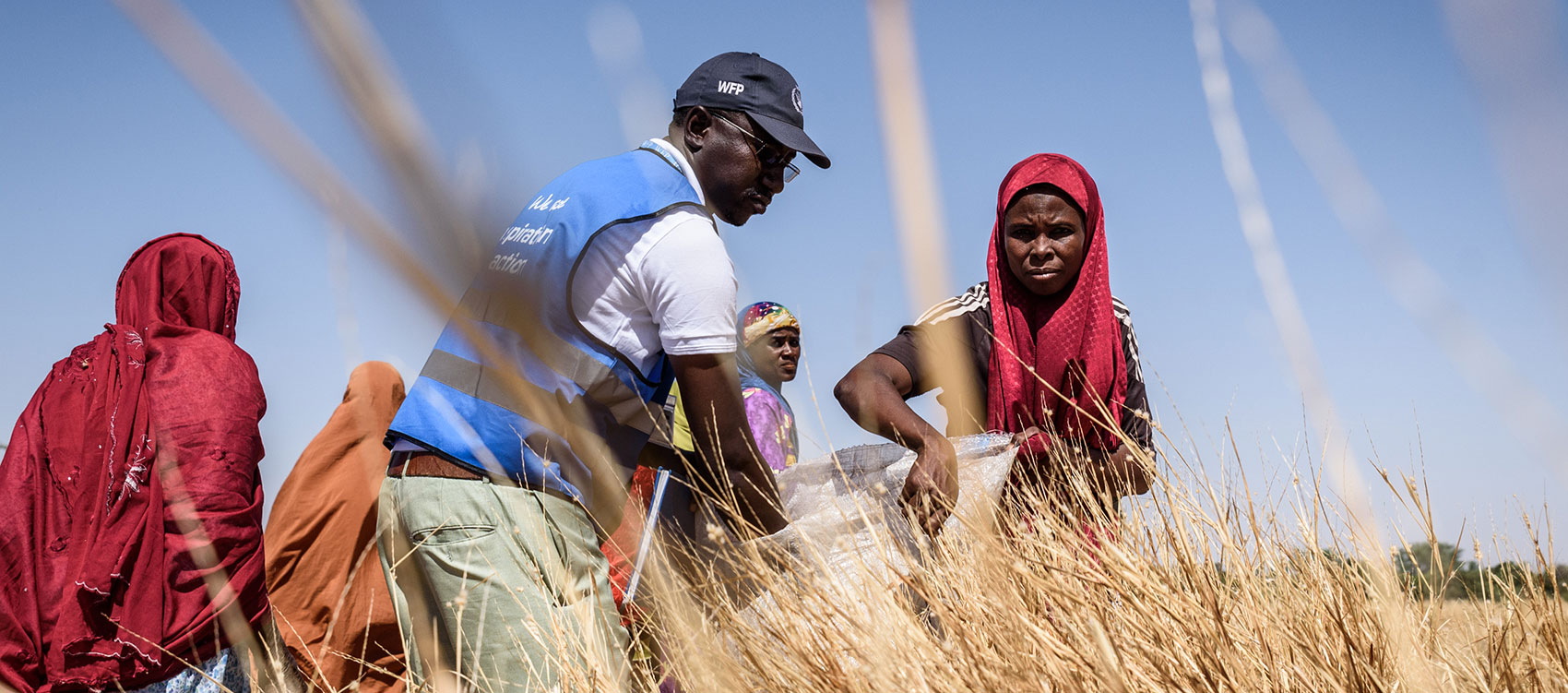 Ismael Abdou Mahamadou is a national UN Volunteer supporting the World Food Program in Maradi, Niger, as Field Monitor Assistant. Here, he participates in training on quality seed collection, as part of participatory community planning.