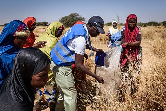 International Volunteer Day 2019 in Niger