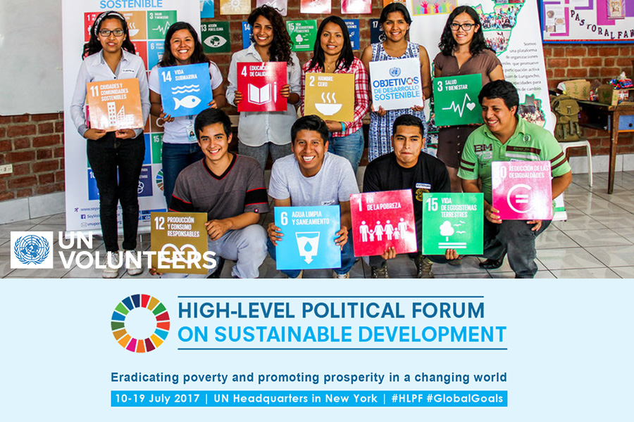high-level political forum official poster youth with SDG cards