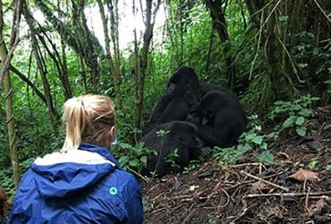 UN Volunteer Programme Support Specialist Linda observes a gorilla family during a field trip to Virunga National Park, Democratic Republic of Congo.
