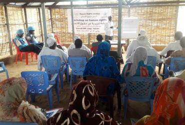 UNV Darfur human rights