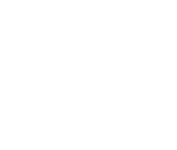 The United Nations Volunteers Unv Programme Unv